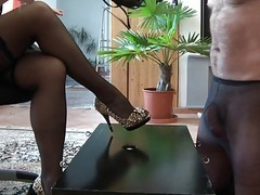 Cock Whipping And Humiliation