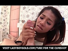 small titted ladyboy pov barebacking