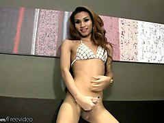 thai tgirl in lingerie masturbates and toys fuck her asshole