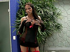 Sexy Tranny In Red Garter Strokes And Squirts